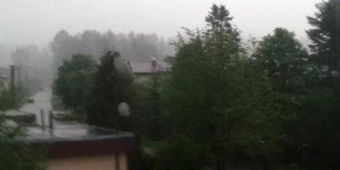 Negaiss Vangažos