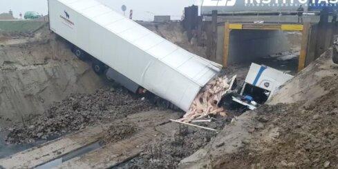 Lietuvā avarē kravas auto ar cūku kautķermeņiem