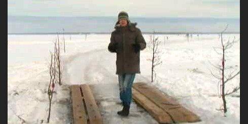 Igauņu ledus ceļu iezīmē kadiķi