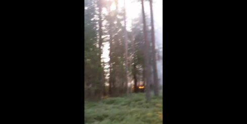 Zemessargi cīnās ar liesmām Valdgales kūdras purvā