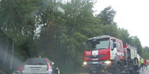 Uz Bauskas šosejas smaga avārija ar vienu bojāgājušo un sešiem cietušajiem