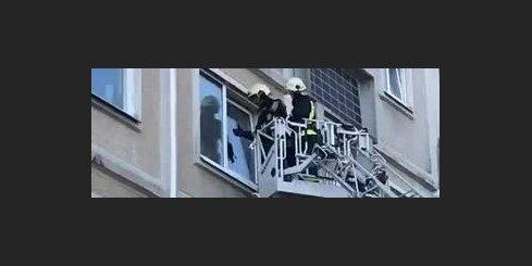 Ugunsdzēsēji mēģina glābt pusatvērtā logā iesprūdušu kaķēnu