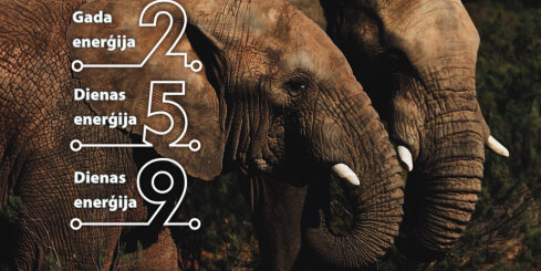 4. decembra numeroloģiskais dienas fons