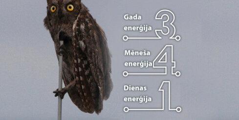 6. janvāra numeroloģiskais dienas fons