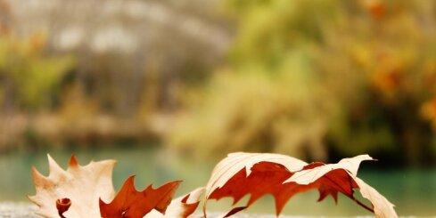 Taroloģe: oktobrī jāiet līdzi pārmaiņu vēsmām