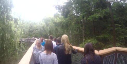 Video pastaiga pa Lietuvas taku virs koku galotnēm