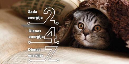 30. novembra numeroloģiskais dienas fons