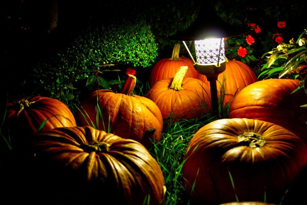 Почему Хэллоуин вообще не имеет никакого смысла? 17 веских причин...