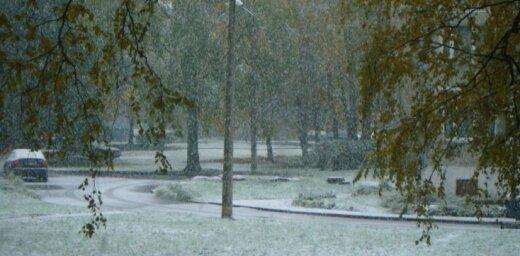 Pirmais sniegs Ķengaragā