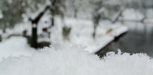 Lasītājs iemūžina sniega kupenu krāšņumu