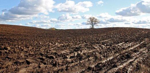 Rosina būtiski celt valsts un pašvaldību zemes nomas maksu