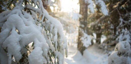 Alūksnē izveidojusies astoņus centimetrus bieza sniega sega