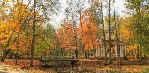 Krāšņi foto: Rudens zelta pielietais Ķemeru sanatorijas parks
