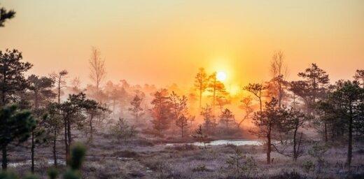 Foto: Ķemeru purva neticamā daile pavasara saullēktā