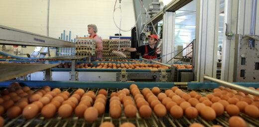 'Balticovo' apgrozījums pagājušajā gadā samazinājies par 2,9%