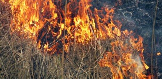 Piektdien Latvijā dzēsti divi kūlas ugunsgrēki