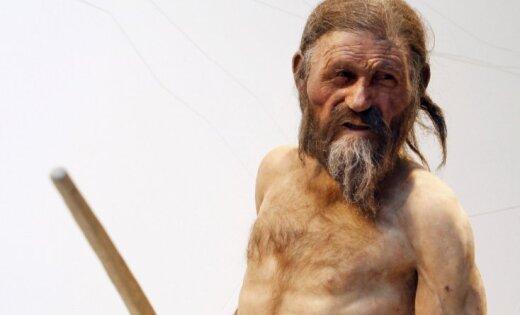 Ученые выяснили, чьи шкуры носил «ледяной человек» Эци
