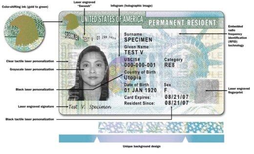 Желающие «свалить» взвыли: Green Card хотят отменить