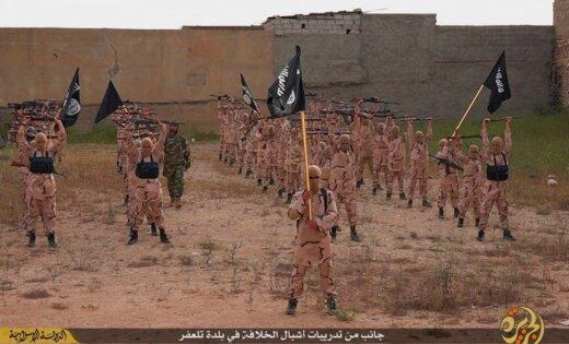 """Латвия может обучить Иракскую армию борьбе с """"Исламским государством"""""""