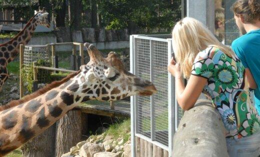 """Рижский зоопарк объявил акцию для обладателей """"звериных"""" фамилий"""