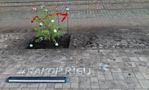 ФОТО ОЧЕВИДЦА: К праздникам готова! На Кр. Барона посадили елочку