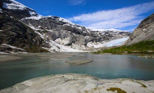 В Норвегии потепление разрушает фауну