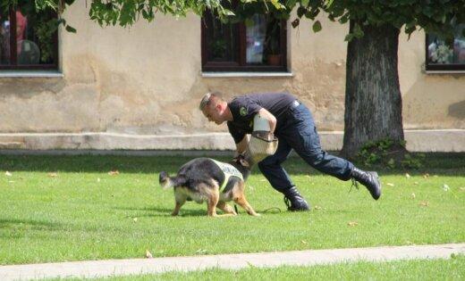 ФОТО: служебная собака Дарвин нашла схрон нелегальных сигарет