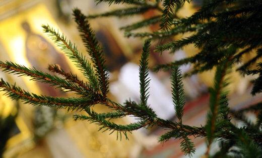 Светлого Рождества! Главы конфессий поздравляют латвийских православных и староверов с праздником