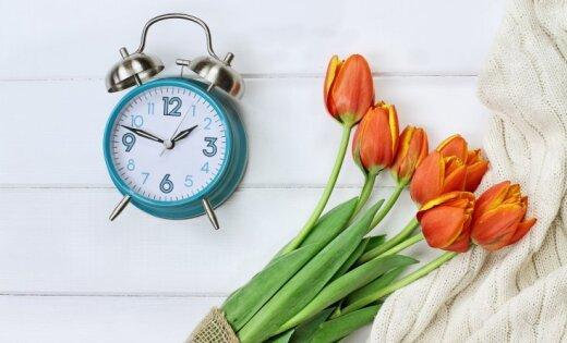 В поисках потерянного времени. Почему в ЕС задумались об отмене перевода стрелок часов