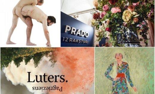 2017. gads kultūrā – izstādes, par kurām runāja, brīnījās un sajūsminājās