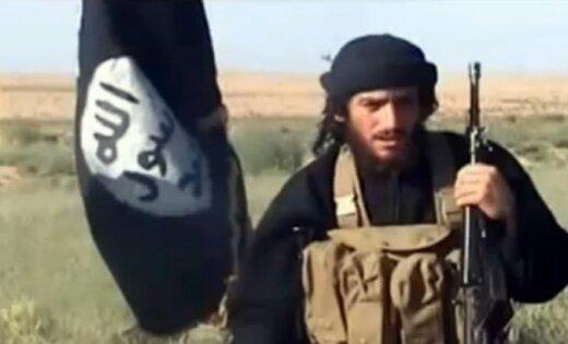 Боевики ИГИЛ говорили о смерти своего секретаря