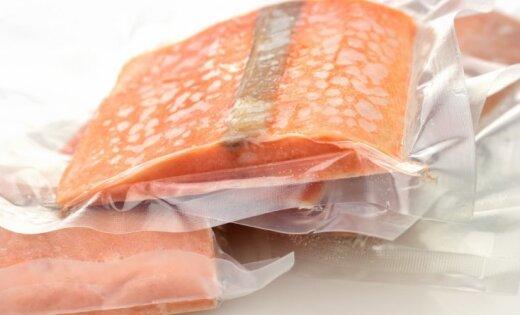 В рацион человека впервые внесена генетически модифицированная рыба