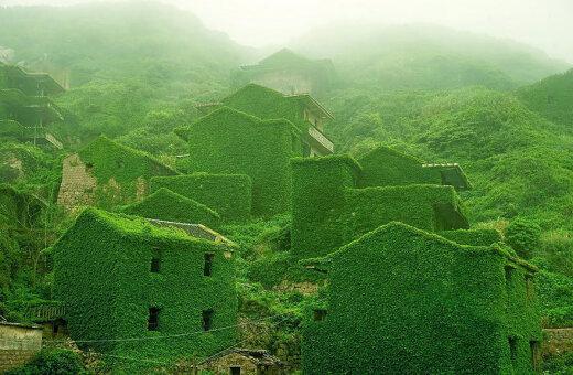 Жутко? Красиво! Жадный лес проглотил заброшенный китайский городок (ФОТО)