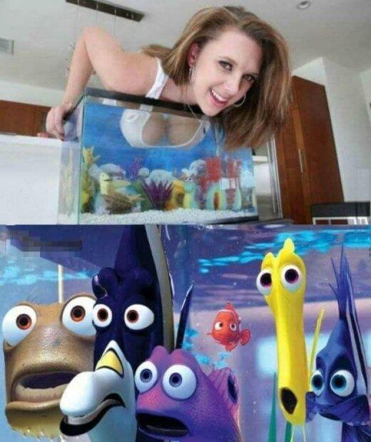 Kādas laimīgas zivtiņas