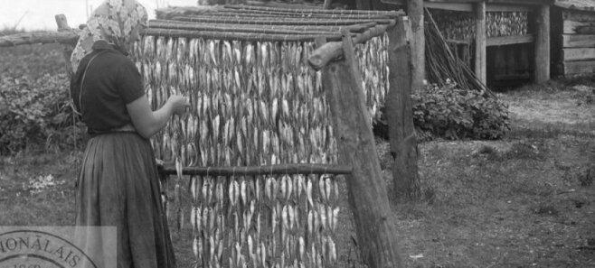 Что ели в старину в Латвии: рассказ третий — мясо, рыба, грибы и дикие растения