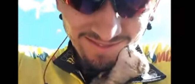 Video: Riteņbraucējs treniņa laikā izglābj mazu kaķīti
