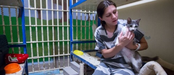 Foto: Mājdzīvnieku cietums – neparasta vieta ASV, kur par mīluļiem gādā ieslodzītie