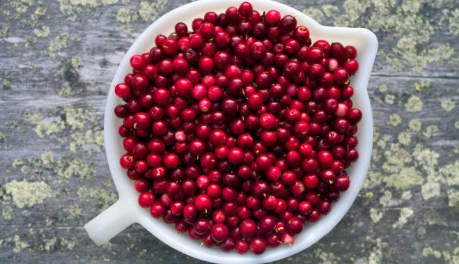 ягода от холестерина 4 буквы