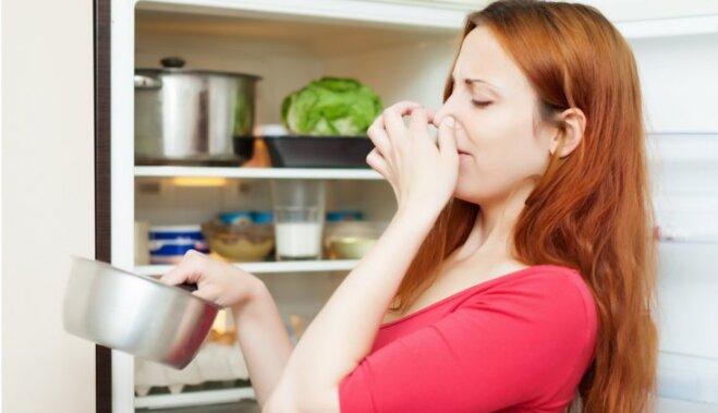 Лайфхак: как узнать, не испортились ли продукты в холодильнике