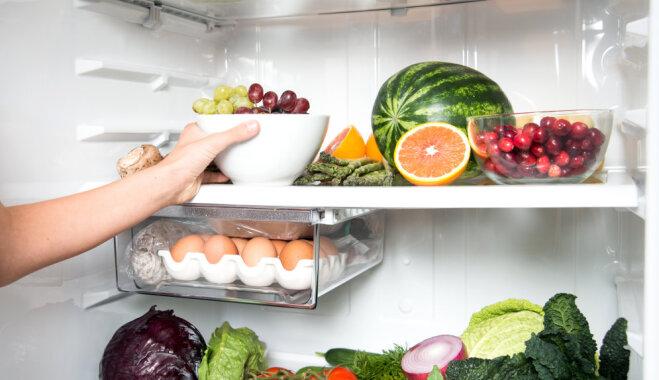 Полезные мелочи – как правильно разместить продукты в холодильнике