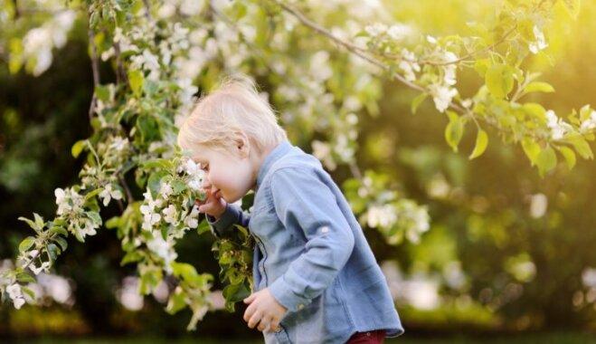 Bērnam alerģija: tās veidi, simptomi un iespējamā palīdzība