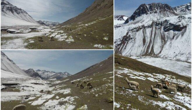 Foto: Vienreizēja sastapšanās aci pret aci ar Varavīksnes kalnu