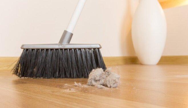 Laiks slinkošanai! 16 iemesli, lai nebūtu jāuzkopj māja
