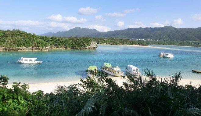 Малоизвестный японский остров возглавил список самых крутых мест для путешествий по версии TripAdvisor (ВИДЕО)