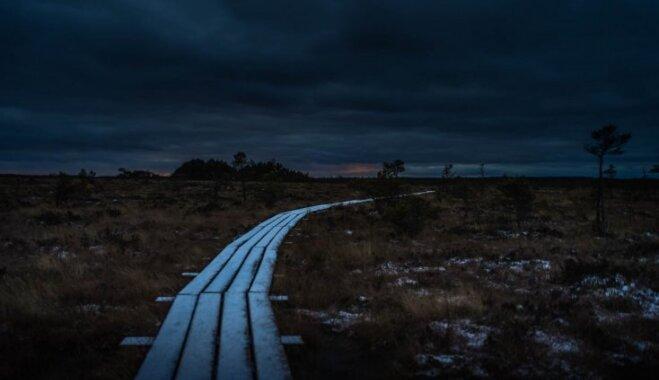 ФОТО: Тропа через Дуникское болото — одна из самых длинных и интересных в Европе