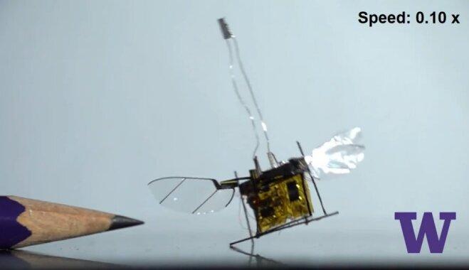 В США создали крохотного летающего робота с питанием от лазерного луча