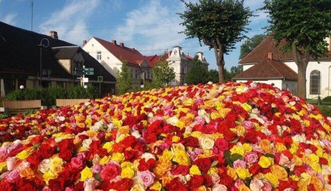 Jūlija vidū Tukumā tiks svinēti Rožu svētki