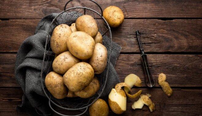 Bieži peltā latviešu otrā maize – kartupelis. Kas tajā vērtīgs un padomi gardām maltītēm