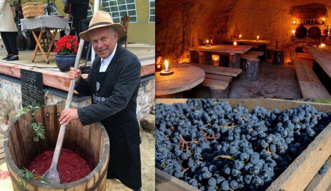 Vīna tūre pa Latviju: vietas, kur paviesoties, izzināt un degustēt
