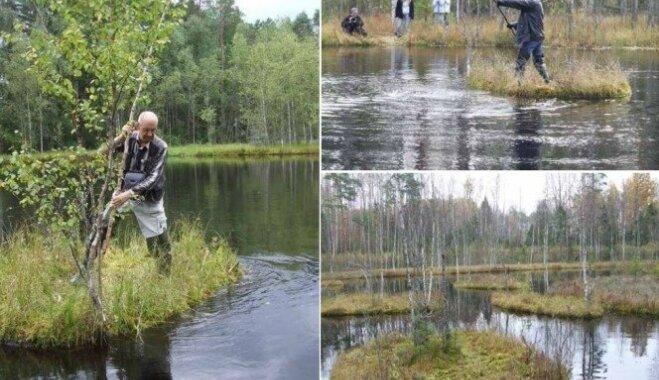 Latvijas ezeru peldošās salas. Kur meklēt šos dabas brīnumus?